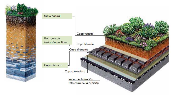 ¿Cuáles son los beneficios de construir una azotea verde?
